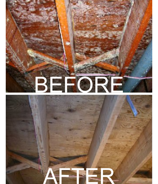 Mold removal before/after